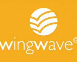 Быть устойчивым к переменам с методом wing wave