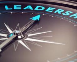 Практическое лидерство, лидирование проектов